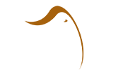 Essential Africa Logo