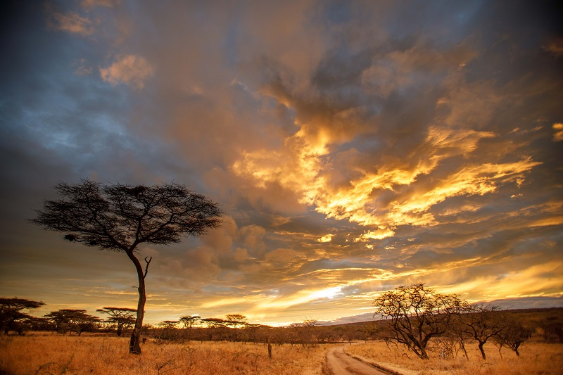 East African Sunset...
